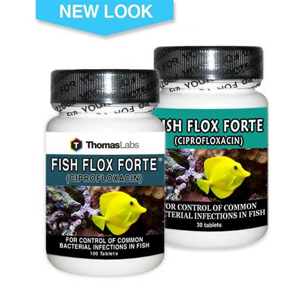 Fish medications for Fish flox forte
